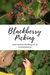 Outdoor activities with toddlers, blackberry picking with Very Much So blog. vmsweekend