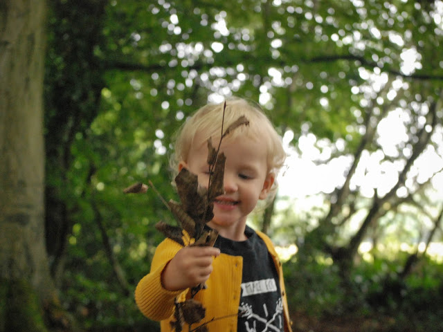 Toddler holding out a bunch of leaves in the woods